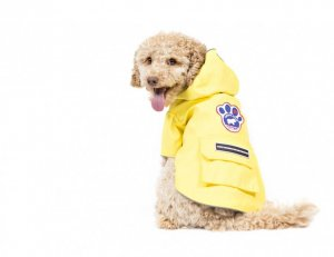 Canada Pooch Torrential Tracker Rain Coat Yellow Size 10