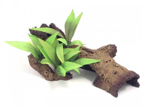 Mopani Wood With Silk Plants Medium