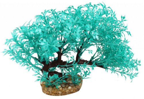 Aqua One Vibrance Didiplis Blue With Gravel Base 10cm