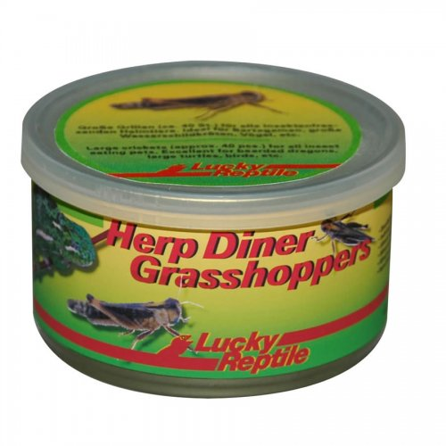 Lucky Reptile Herp Diner Grasshoppers Medium 35g