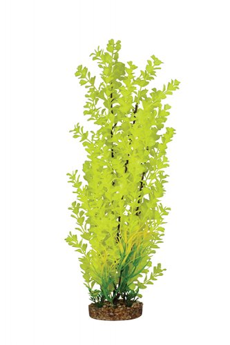 Aqua One Vibrance Yellow Ambulia With Gravel Base Tall XXL