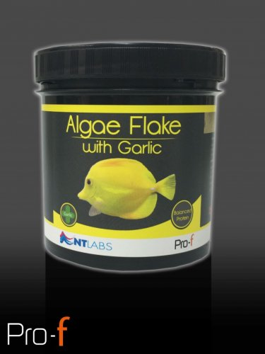 NT Labs Algae Flake with Garlic 30g