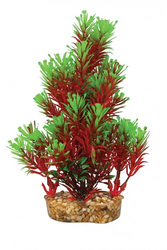 Aqua One Vibrance Red & Green Ludwigia With Gravel Base S/M