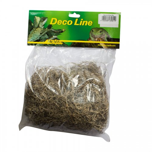 Lucky Reptile Spanish Moss 50g
