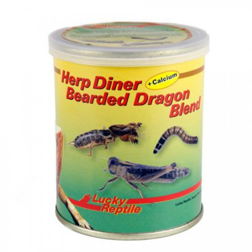 Lucky Reptile Herp Diner Bearded Dragon 70g
