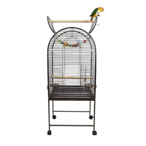 Cages for Small Parrots