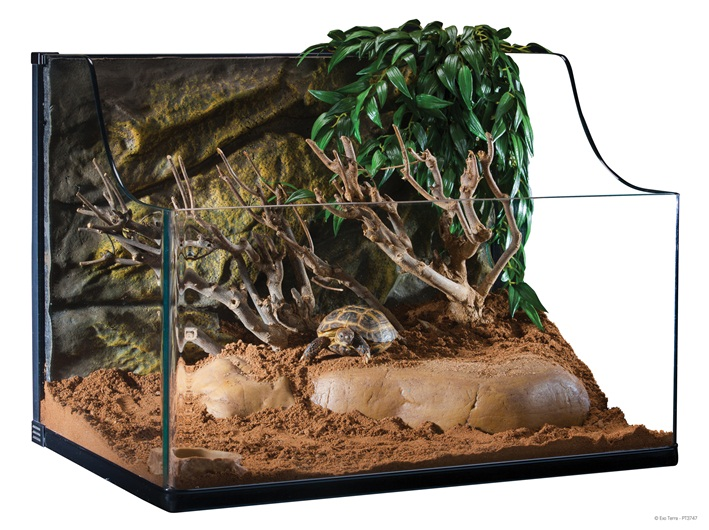 exo terra turtle terrarium medium 015561237475. Black Bedroom Furniture Sets. Home Design Ideas