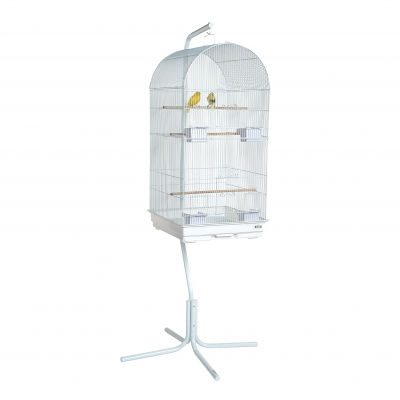 Rainforest Caracus Cage White